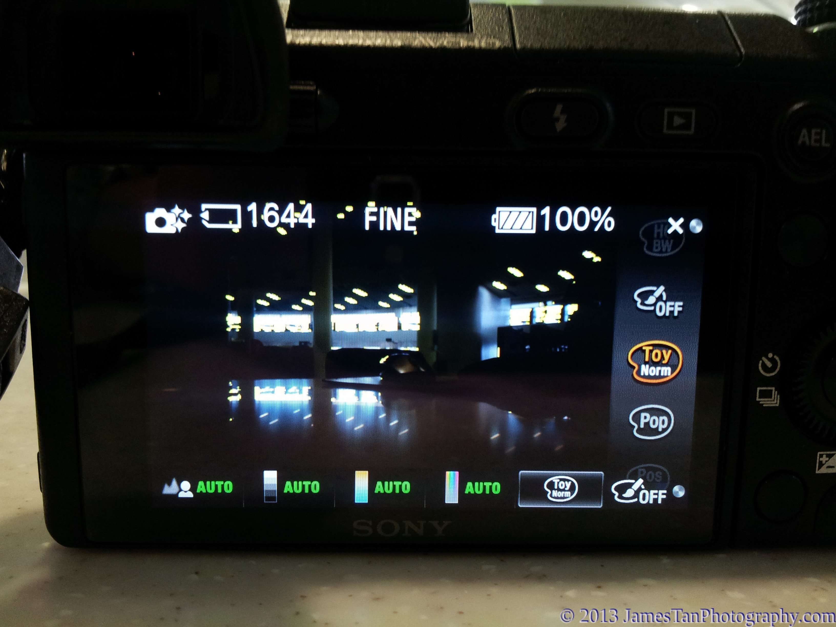 Sony Alpha NEX-6 - Picture Effects